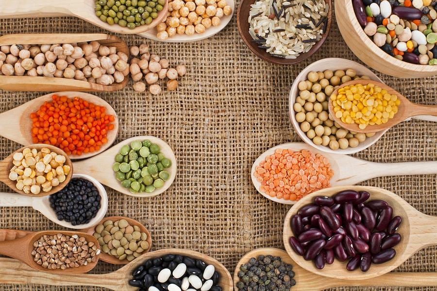 Продукты с большим содержание белка