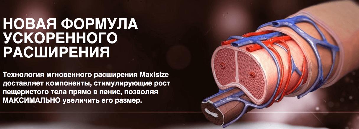 Состав геля MaxiSize