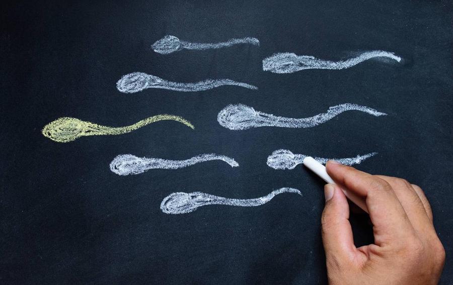 При оргазме не выходит сперма