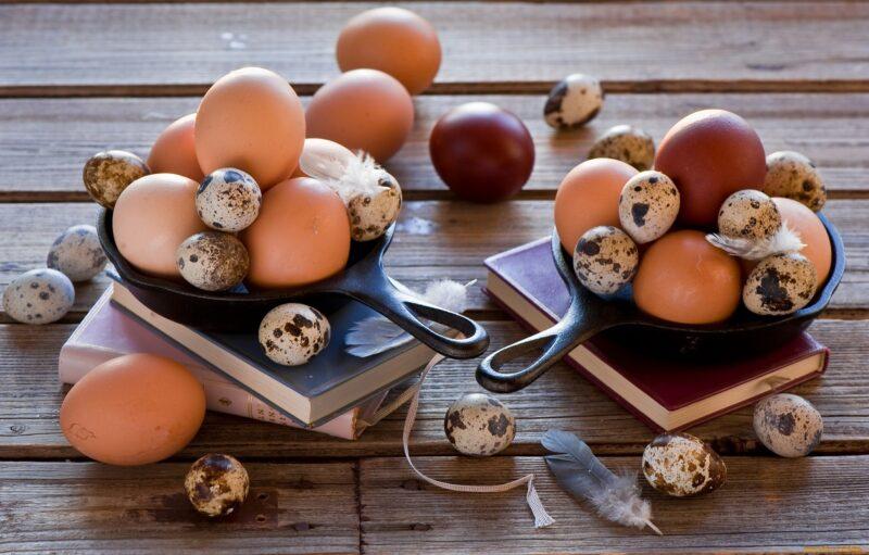 Яйца: полезные жиры