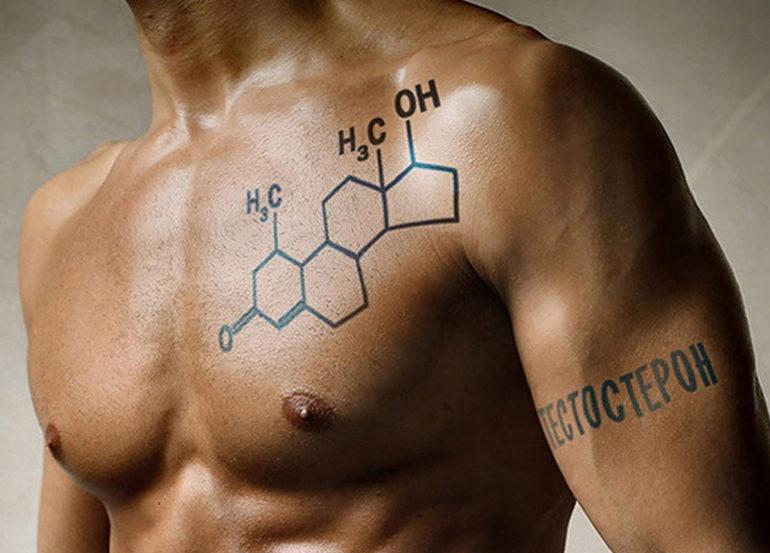 Тестостерон в мужском организме