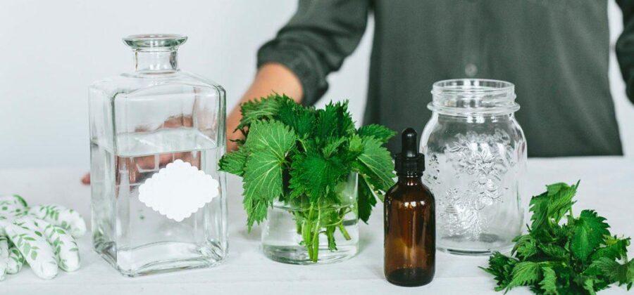 Семена крапивы для мужской потенции: полезные свойства и лучшие рецепты