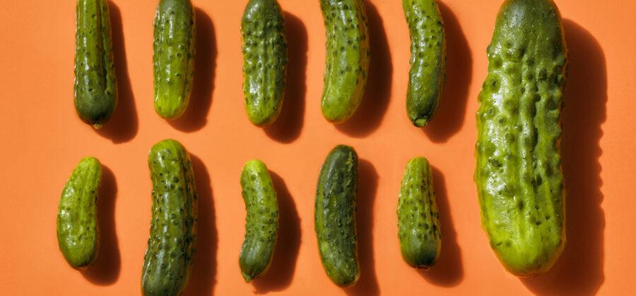 Разновидности пенисов по размерам и форме
